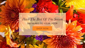 new castle florist flower delivery by butterfly wish bouquets
