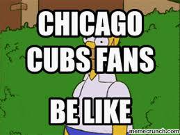 Chicago Cubs Memes - cubs fans