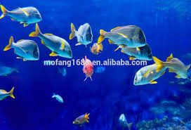 3d wallpaper philippines 3d wallpaper philippines suppliers and