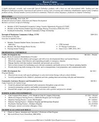 best resume writing service houston resume writing services houston resume template