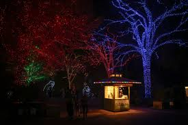 Washington Dc Zoo Lights Zoolights Returns To Illuminate The Holiday Season Dc Refined