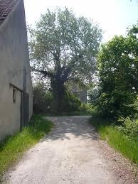Freilandmuseum Bad Windsheim 10 Plätze Die Man Bei Einem Besuch Im Seenland Erlebt Haben