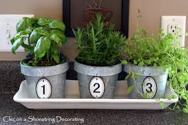 Kitchen Herb chic on a shoestring decorating kitchen herbs in numbered pots
