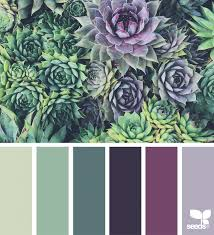 color harvest wedding color pallets and house