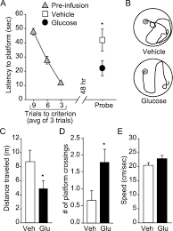 spatial memory formation and memory enhancing effect of glucose