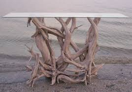 rare driftwood gathered from the islands around florida