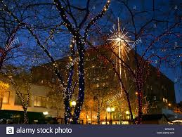 washington trees decorated with christmas lights and the macy
