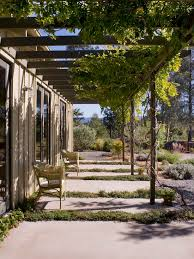 Vine Trellis Ideas Pergola With Vines Interiors Design