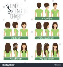 medium length hairstyles from the back armpit length hairstyles fade haircut