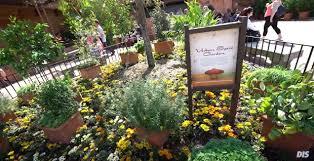 2017 epcot flower and garden festival flower garden epcot