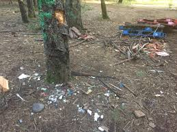 Trashing by Fraternity Being Investigated For Trashing Campsite U2013 The Orion