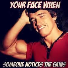 Arnold Schwarzenegger Memes - arnold schwarzenegger gains mem fitness volt bodybuilding