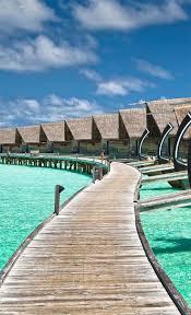 219 best dream study spot the beach images on pinterest places