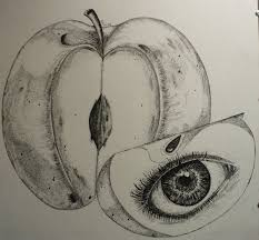 apple of my eye by erin tierney on deviantart