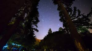 Light In The Sky California Star Time Lapse With Clear Night Sky In The Wood With Tree Window