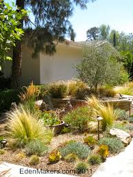 outdoor landscape without lawn succulent gardens front yard