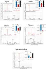 a multiplatform metabolomic approach to the basis of antimonial