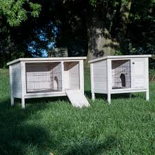 Sale Rabbit Hutches Boomer U0026 George Elevated Outdoor Rabbit Hutch White Wash Hayneedle