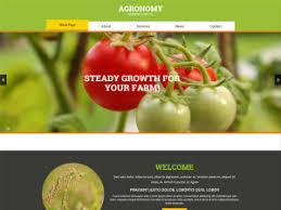 best free html templates themes u0026 templates freemium download