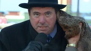 ask the weather guys how good are the groundhog predictions