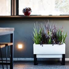 beautify your garden with modern outdoor planters lestnic
