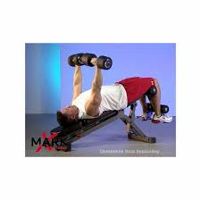 Professional Weight Bench Xm 7628 Fid U0026 Ab Combo Weight Bench