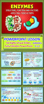 248 best images about biology on pinterest activities student