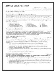 sle executive resume sle executive resume cover letter