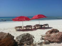 ebony u0026 ivory beach bungalows nungwi tanzania booking com