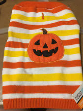 Martha Stewart Dog Halloween Costumes Martha Stewart Dog Halloween Pumpkin Face Sweater Size Xsmall Ebay