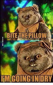Ewok Meme - fbtelhepillow imcoinginidry ewok going in dry meme on sizzle
