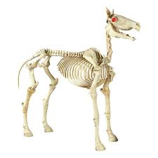 halloween skeleton images home accents holiday 74 in halloween standing skeleton horse 6342