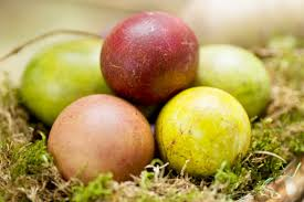 fruit color easter egg dye approved by mother nature the fruit