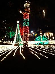 brookfield zoo winter lights lincoln park zoo at christmas time would like to see this or at