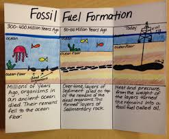 sedimentary rock and fossil fuels after science tutoring