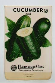 cheap seed packets best 25 seed packets ideas on vintage seed packets