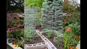 exotic backyard vegetable garden designs youtube