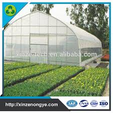 vegetable greenhouse kits vegetable greenhouse kits suppliers and