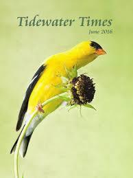 june 2016 ttimes web magazine by tidewater times issuu