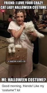 Cat Lady Meme - sees cat at party finally some i can talk to teehee pinterest