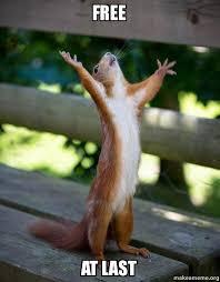 Make Meme Free - free at last happy squirrel make a meme