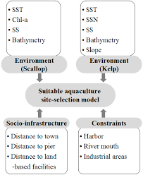 sustainability free full text impact of oceanographic