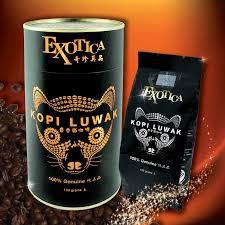 Luwak Coffee kopi luwak the most expensive coffee