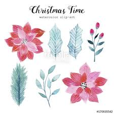 watercolor illustrations with christmas leaves and flowers hand
