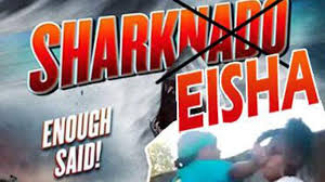 Sharkeisha Meme - sharkeisha 5 fast facts you need to know heavy com