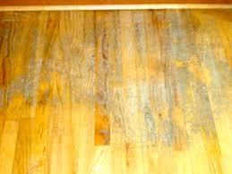 clean hardwood floors akioz com