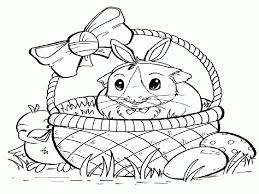 baby guinea pig coloring pages best coloring page site
