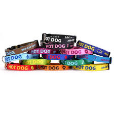collars and leashes personalized tags pet collars