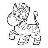 zebra coloring stock illustration image 39701575