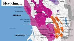 Map Of Napa Valley What Makes Great Wine U2026 Great Wine Folly